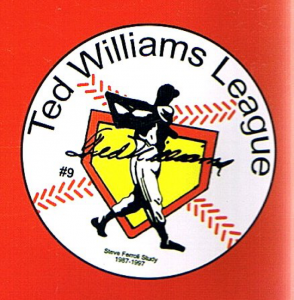Ted Williams League